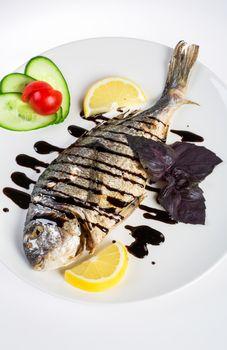 Dorado roast fish on the white