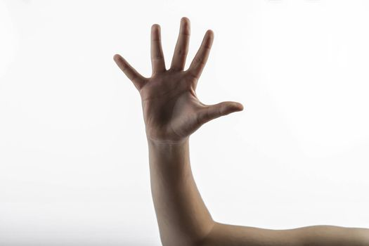 Young hands makes a gesture: sign of 5 fingers