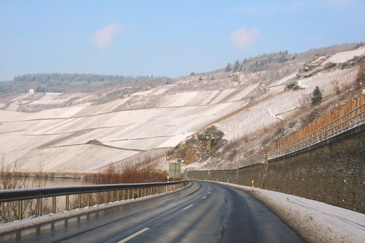 winter vineyards and road