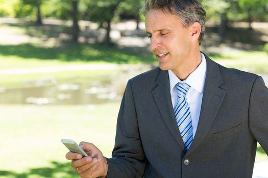 Businessman text messaging through cellphone