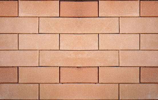 Brown brick wall for a background.