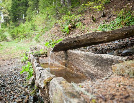 Natural fountain spring