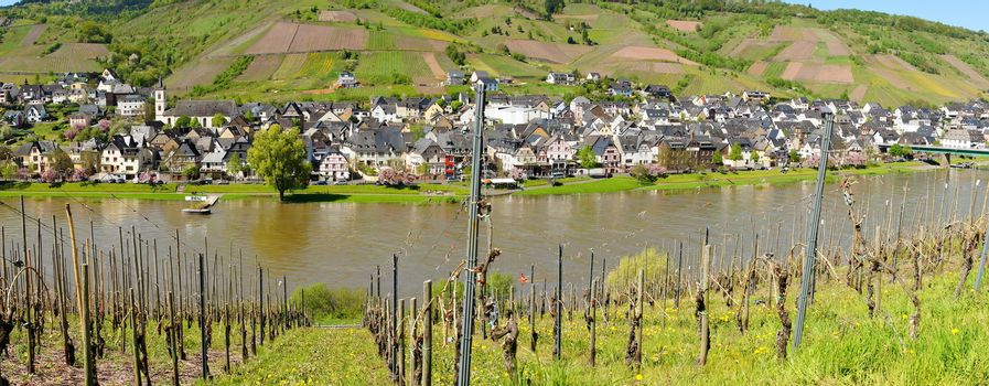 Reil on the Moselle panorama