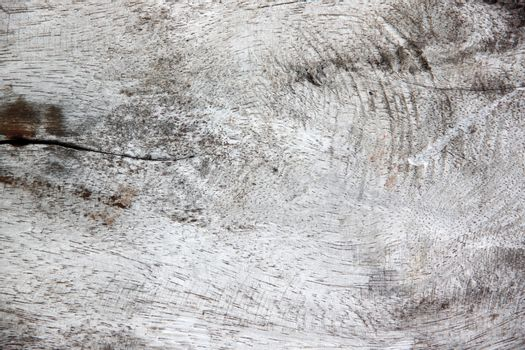 Textured and pattern of old wood for background.