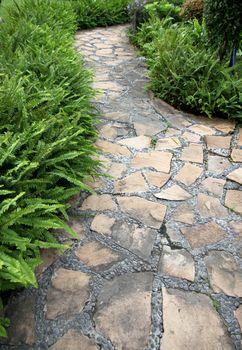 Walkway Stone in the backyard.