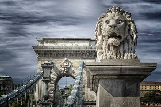 Lion of the Chain Bridge in Budapest