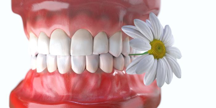 teeth with flower medicine dental health concept