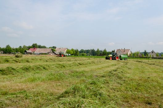 Heavy agricultural machines tractors preparing hay for animal food fodder in field.
