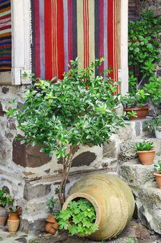 Gardening in the Yard: Handmade Carpet, Pot and Greenery