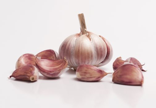 Garlic Bulb and a Individual Cloves