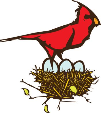 Woodcut style image of a Cardinal with a nest of eggs.