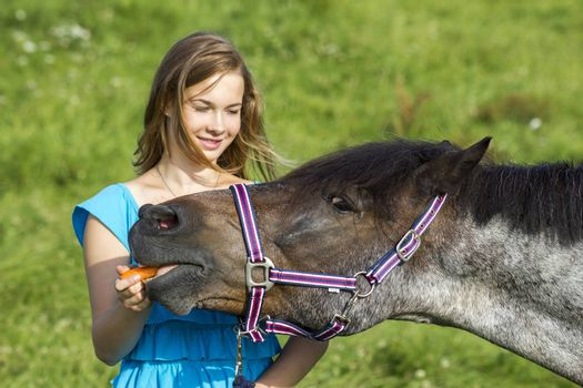young girl giving a carrot to her horse