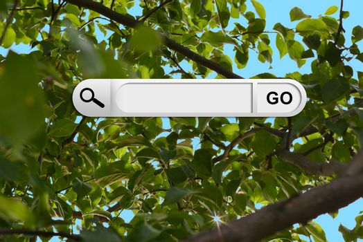 Search bar in browser. Green leaves and brown branches of tree on background