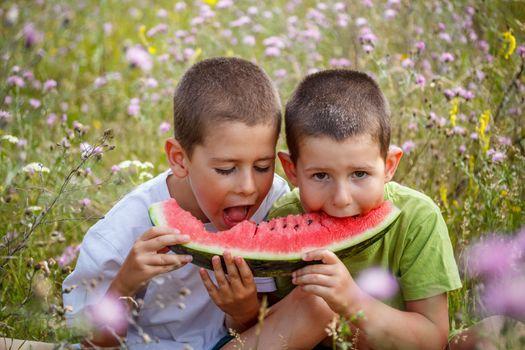 Boys eating watermelon