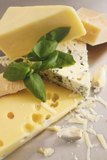 Various types of cheese on stainless