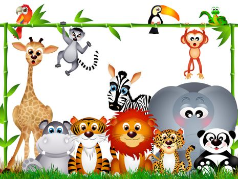 illustration of wild animals on white background