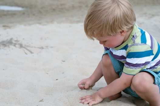 Little toddler boy playind with sand on the beach