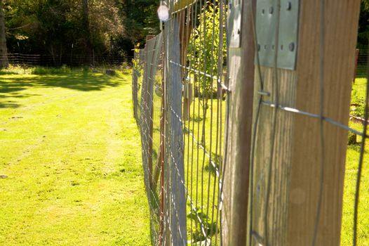 Farm fence and field