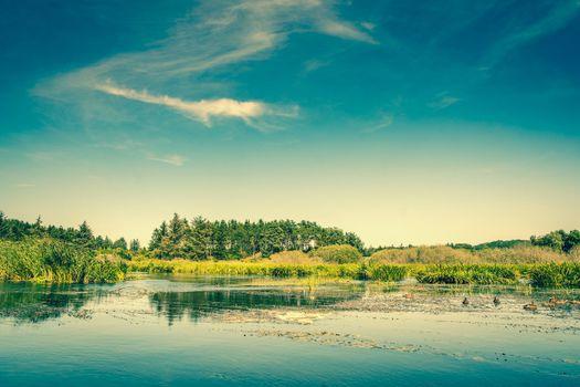 Idyllic lake scenery in daylight