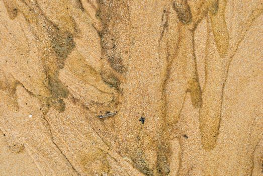 Texture of sand and waste water leak on beach .