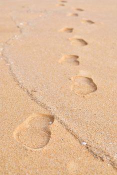 footprint on a sand