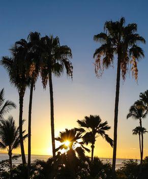 Maui sunset in Hawaii