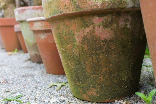 Terracotta flower pots in a row