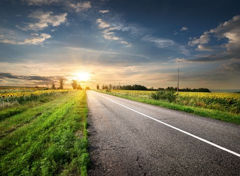 Asphalted highway