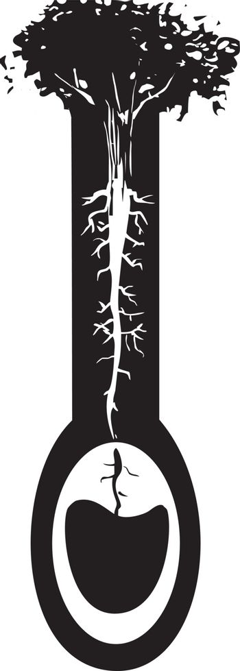 Woodcut style image of a tree with roots like nerve endings taking water from an aquifer.
