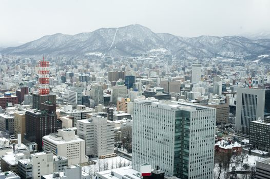City of Sapporo as viewed from the JR Tower