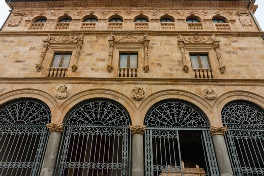 Facade full view of La Salina Palace also known as Fonseca��s Palace in Salamanca Spain nowadays it is the seat of Salamanca��s Diputacion