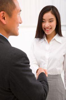 Businesswoman shaking hand with businessman