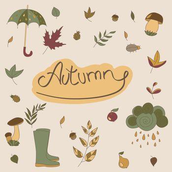 Autumn objects. Seasonal objects