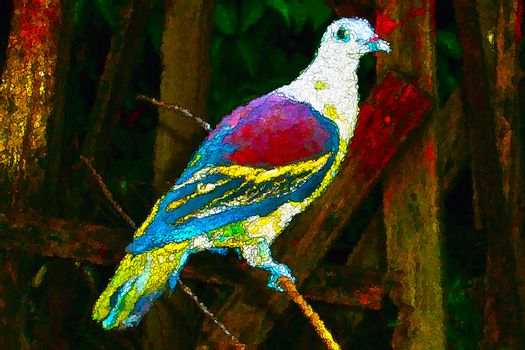 Colorful bird creative painting style