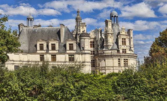 Detail of the famous Chambord Castle located in the Loire Valley, in a summer day, framed by beautiful green plants.