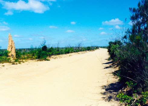 termit mound road