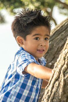An Asian Boy Climbinga Tree