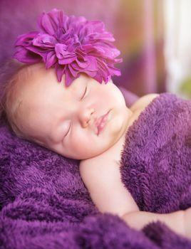 Cute newborn girl sleeping