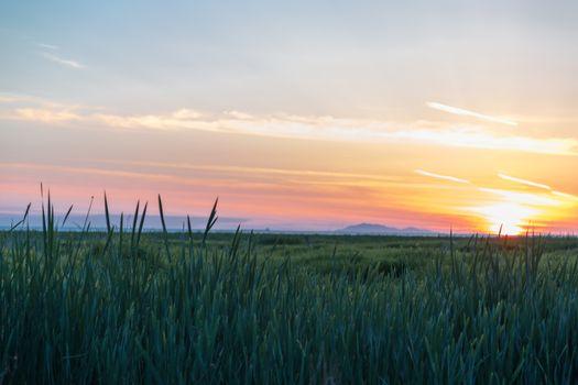 Western Canadian Sunset
