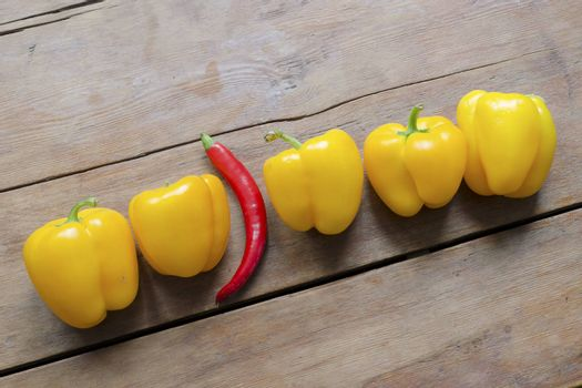 row of sweet yellow paprika and one red hot chili pepper between them on vintage wooden table