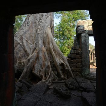 The Temple of  Banteay Kdei in the Temple City of Angkor near the City of Siem Riep in the west of Cambodia.