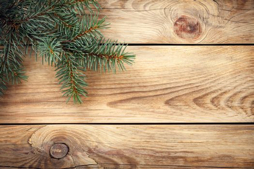 Christmas spruce tree on wooden table for holiday background. Copy space. Top view