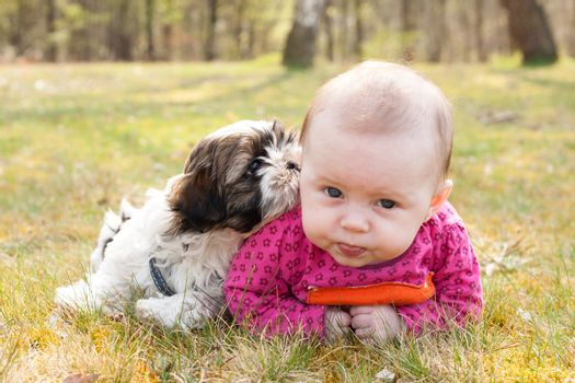 Cute baby and puppy are on the grass in nature