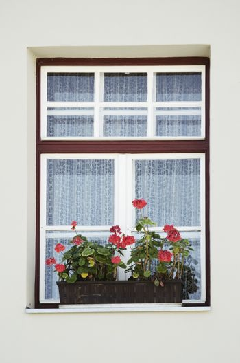 Photo of The Old Window With Flowers