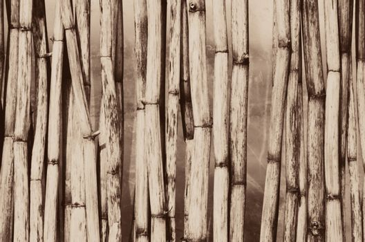 Photo of the Vintage Wooden Cane Background