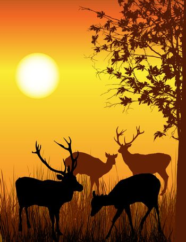 Background illustration of wild deer in forest
