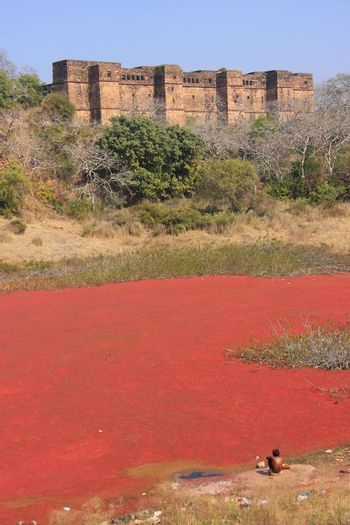 Ranthambore Fort and red lake, India
