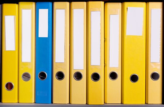 Business folders abreast in case at office