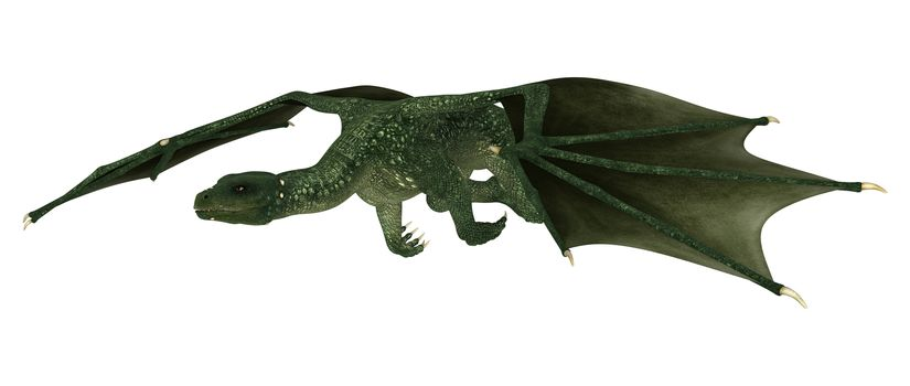 3D digital render of a flying green fantasy dragon isolated on white background