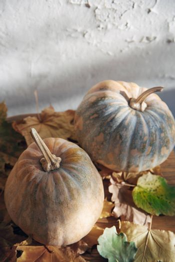 Pumpkins for Halloween with autumn leaves. Vertical photo
